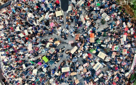 Occupy Wall Street: A Protest for What?